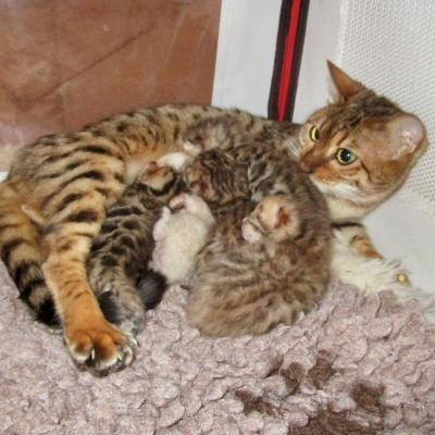 Avec maman...